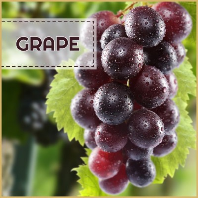 Grape - AROMA 10ml