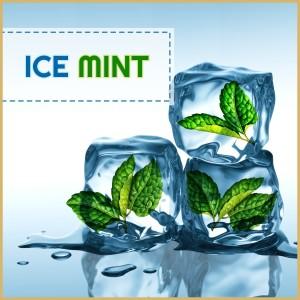 Icemint - AROMA